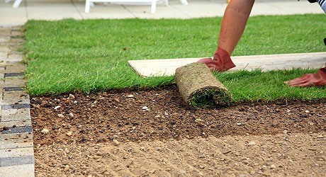 What is the Best Time of Year to Lay Turf?