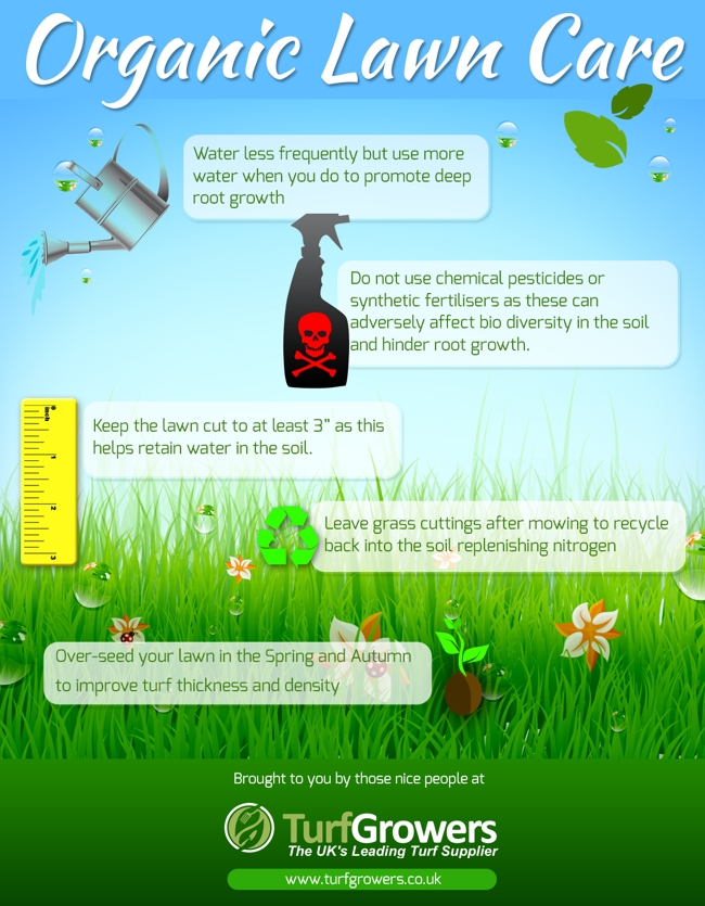 Organic Lawn Care Infographic