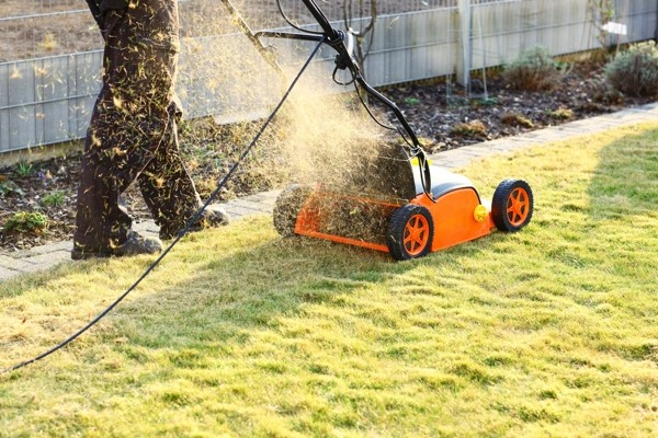 When to Scarify a Lawn