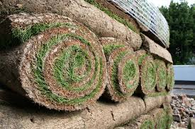 Laying Turf in 3 steps: how to produce a flawless lawn with Turf Growers
