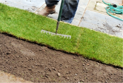 laying-turf-firming