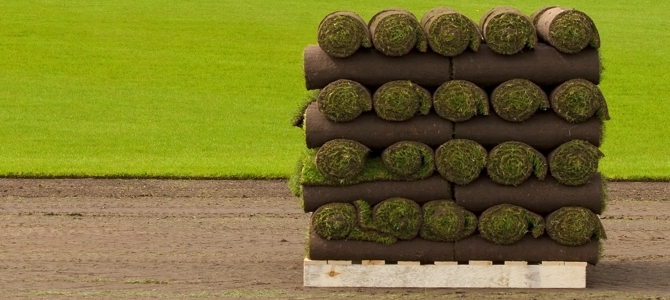 Turf Growers buy grass